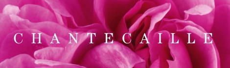 Beautyaddict.com Chantecaille rose de mai